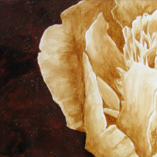 """Angel Sarkela-Saur created this original """"Beautiful Details"""" Coffee Art® painting. It features a beautiful close up of the rose petals."""
